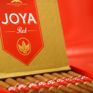 joya red cigar 061