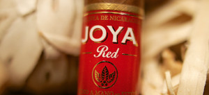 joya de nicaragua red cigar joya red review borubon and leaf