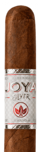 joya silver features