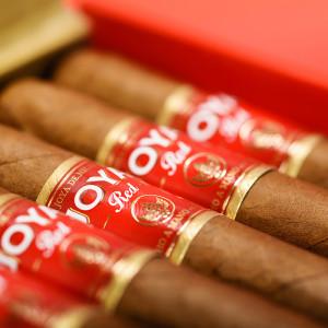 joya red cigar 05