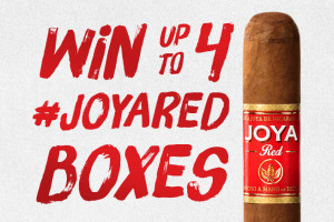 joya red promo blog