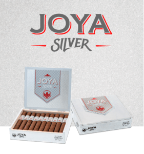 hero joya silver mobile