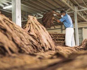 Pilones Our Process_Joya_De_Nicaragua
