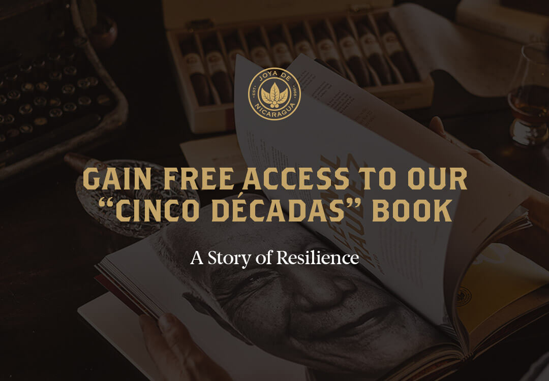 a story of resilience - portada
